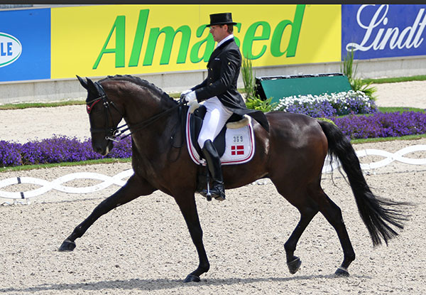 Anders Dahl and Selten HW. © 2016 Ken Braddick/dressage-news.com