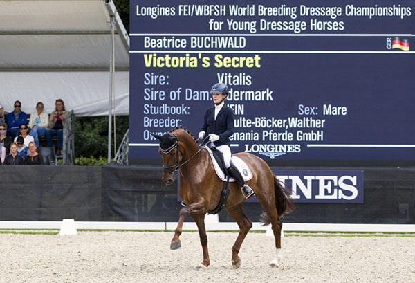 Beatrice Buchwald on Victoria's Secret in the World Breeding Dressage Championships for Young Horses © 2016 DigiShots