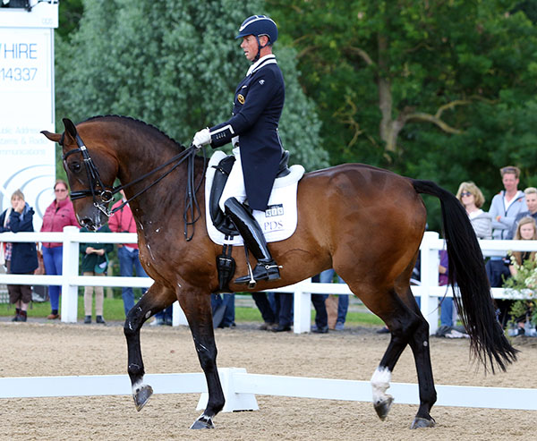 Carl Hester on Nip Tuck at last pre-Olympic competition where the pair logged personal best results in the Grand Prix and the Special. © 2016 Ken Braddick/dressage-news.com