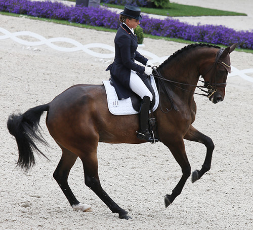 Dorothee Schneider and Santiago 221 place second in the Prix St Georges © ilse Schwarz/dressage-news.com
