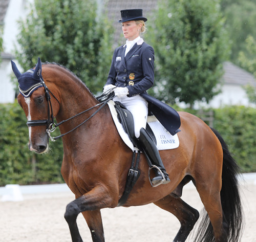 Helen Langehanenberg and Suppenkasper are a study in concentration as they enter the stadium. They would finish fifth in the Prix St Georges with 72.921 percent