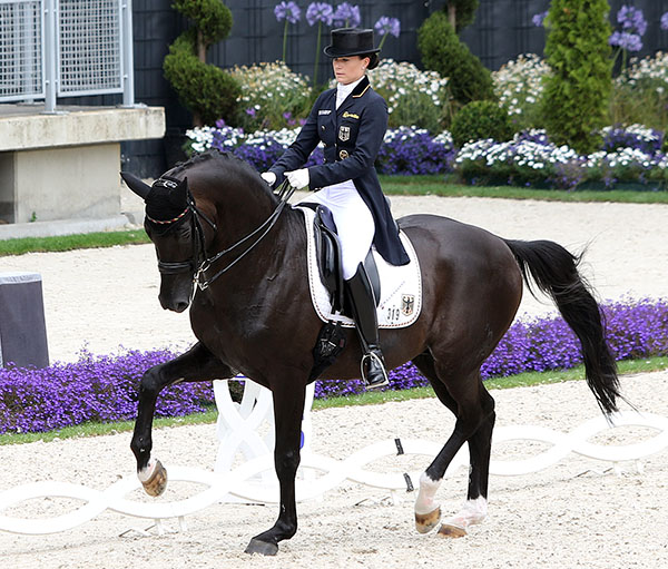 Kristina Brorign-Sprehe riding Desperados to top individual in the Grand Prix Special to lead Germany to Nations Cup victory. © 2016 Ken Braddick/dressage-news.com