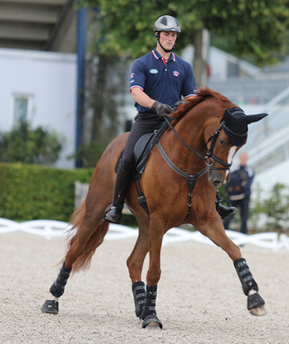 Michael Eilberg and Woodlander Farouche demonstrate plenty of reach in a schooling canter half pass © Ilse Schwarz/dressage-news.com