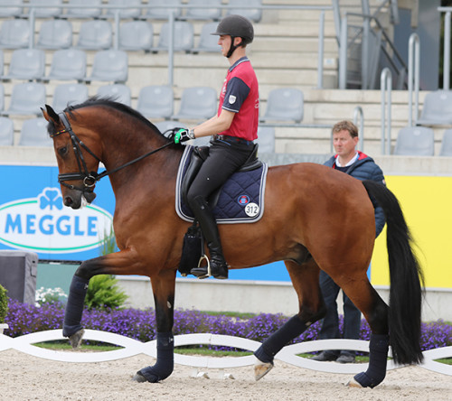 Sönke Rothenberger and Cosmo under the watchful eye of his father Sven Rothenberger © Ilse Schwarz/dressage-news.com