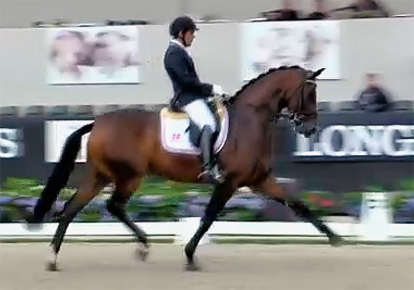 Fiontini ridden by Spain's Severo Lopez to win the World Young Horse six-year-old championship preliminary class.