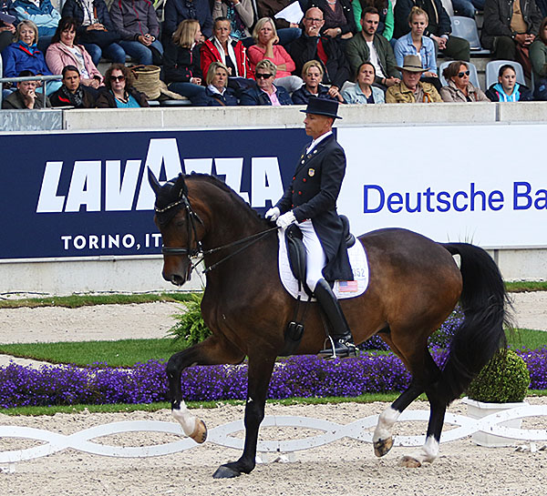 Steffen Peters on Legolas leading the USA to second place midway through the Nations Cup at Aachen, Germany. © 2016 Ken Braddick/dressage-news.com