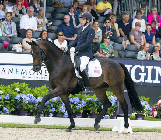 David Wightman - Silberpfeil in the  World Breeding Dressage Championships for Young Horses. © 2016 DigiShots