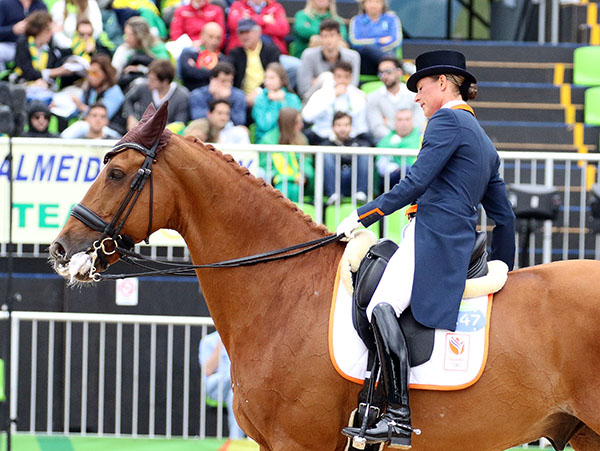 Adelinde Cornelissen called it quits on Parzival after the 19-year-old horse appeared to be stressed early in the Grand Prix. © 2016 Ken Braddick/dressage-news.com