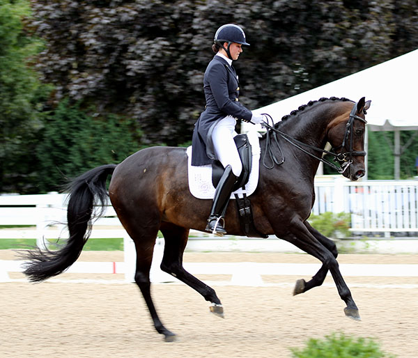 Adrienne Lyle and Horizon at the USA Developing Horse Championships. © 2016 Ken Braddick/dressage-news.com