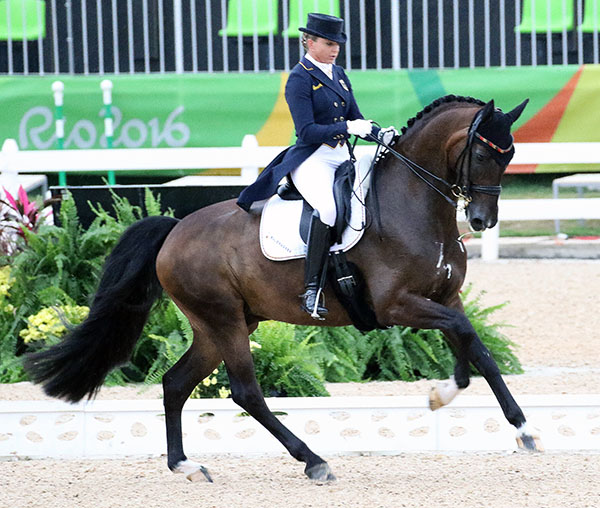 Dorothee Schneider on Showtime in the Olympic dressage Grand Prix. © 2016 Ken Braddick/dressage-news.com