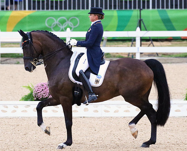 Dorothee Schneider on Showtime. © 2016 Ken Braddick/dressage-news.com