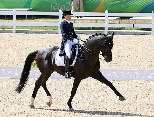 Kristina Bröring-Sprehe and Desperados FRH on their way to their first Olympic individual medal, bronze, after earning team silver in London in 2012 and team gold at Rio. © 2016 Ken Braddick/dressage-news.com