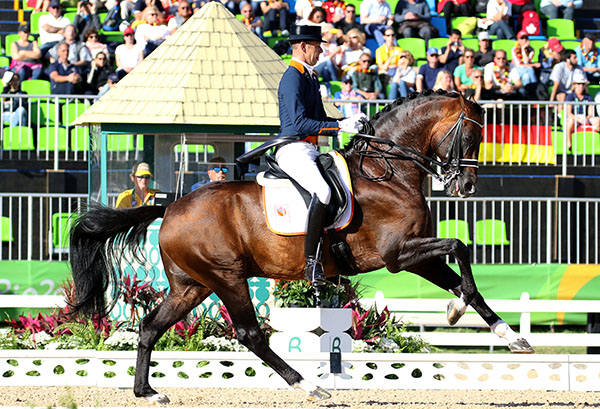 Hans Peter Minderhoud on the big gaited Johnson was the top placing combinations for the Netherlands that placed them fourth after Grand Prix in the Olympic dressage team event. © 2016 Ken Braddick/dressage-news.com