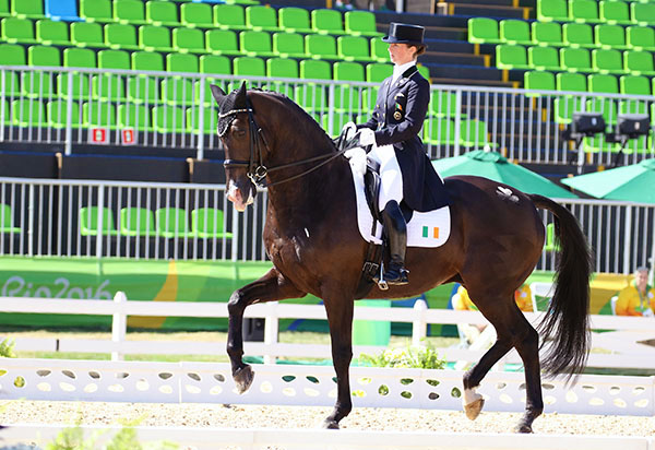 Judy Reynolds on Vancuver K, only the fourth Irish rider to compete in Olympic dressage and the first to make it place high enough in the Grand Prix to maker it to the Special. © 2016 Ken Braddick/dressage-news.com