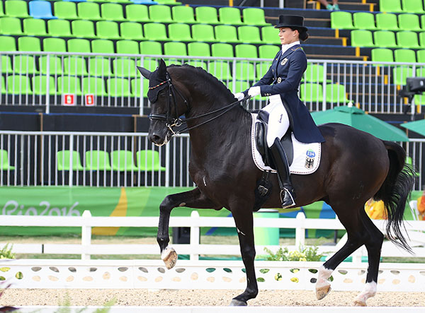 Kristina Bröring-Sprehe on Desperados FRH was just as focused in producing the second highest result in the Olympic Grand Prix team test. one of three German combinations to score above 80 per cent. © 2016 Ken Braddick/dressage=-news.com