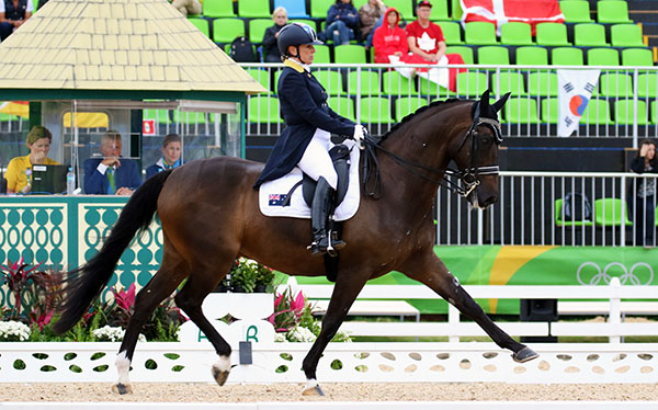 Sue Hearn riding Remmington on the Australian team in the Olympic dressage Grand Prix. Australia did not qualify for the Grand Prix Special that is the second phase of team competition. © 2016 Ken Braddick/dressage-news.com