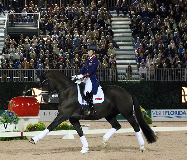 Charlotte Dujardin and Valegro filled the seats at New York's Central Park Horse Show for a demonstration of her World Cup Freestyle. © 2016 Ken Braddick/dressage-news.com