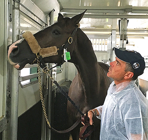 Where are we? Valegro arriving in New York after a trans-Atlantic flight accompanied by Alan Davies, his long-time international groom who has been a center of the horse's life. Photo courtesy of Alan Davies