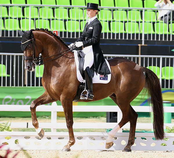 Kristy Oatley and Du Soleil. © 2016 Ken Braddick/dressage-news.com