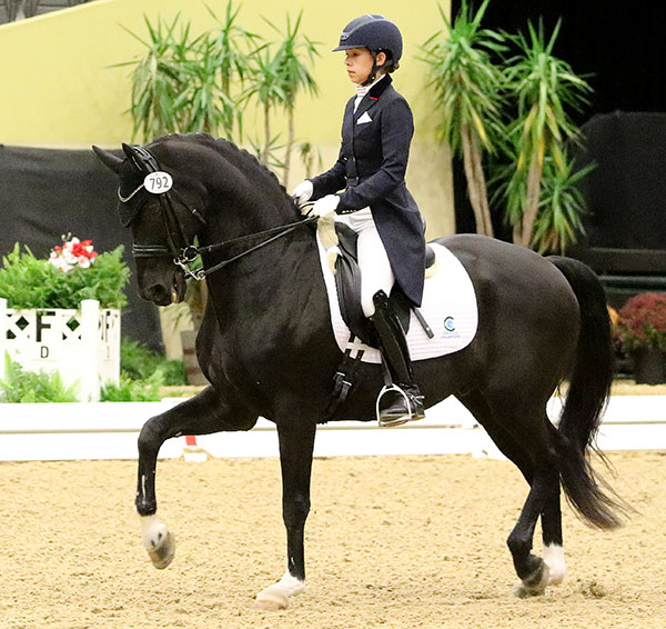 Chase Hickok and Sagacious HF in the US Dressage Finals Grand Prix Championship. © 2016 Ken Braddick/dressage-news.com
