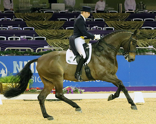 Jan-Dirk Giesselmann and Real Dancer at the Frankfurt CDI4*. © 2016 Ken Braddick/dressage-news.com