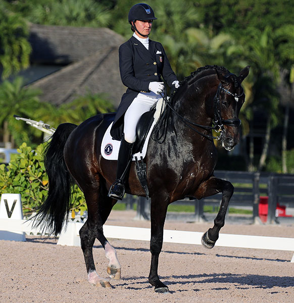 Adrienne Lyle and Salvino have yet to compete as a partnership in a CDI but the development along with more strength was on display in the Intermediate II.© 2017 Ken Braddick/dressage-news.com