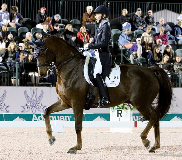 "Arlene ""Tuny"" Page on Woodstock in the World Cup Grand Prix Freestyle. © 2017 Ken Braddick/dressage-news.com"
