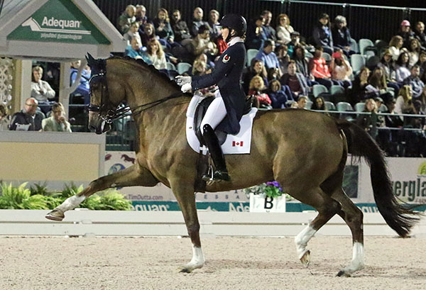 Brittany Fraser on her big moving All In in the World Cup Grand Prix Freestyle at the Adequan Global Dressage Festival. © 2017 Ken Braddick/dressage-news.com