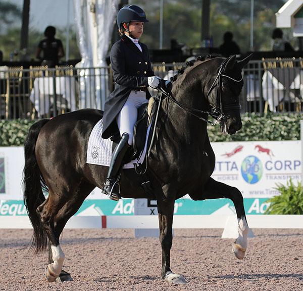 Chase Hickok on Sagacious HF, 18-year-old KWPN gelding, in the Adequan Global Dressage Festival CDI-W Grand Prix. © 2017 Ken Braddick/dressage-news.com