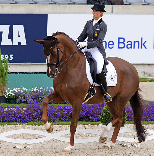 Girasol being ridden by Morgan Barbançon at the CDI4* in Aachen, Germany. © 2016 Ken Braddick/dressage-news.com