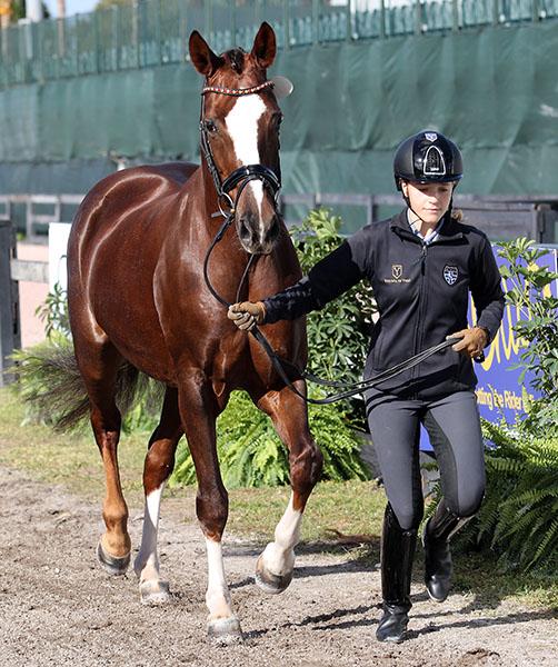 Spanish junior rider Natalia Bacariza-Danguillecourt and Rihanna Ymas. © 2017 Ken Braddick/dressage-news.com