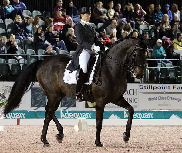 Tinne Vilhelmsson-Silfvén of Sweden on Paridon Magi, placing second in the Adequan Global Dressage Festival World Cu Freestyle. © 2017 Ken Braddick/dressage-news.com